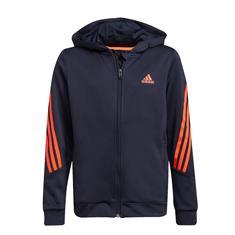 Adidas B AR 3S HOOD