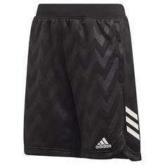 Adidas JB TR XFG SH