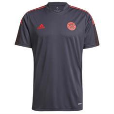 Bayern Munchen Trainingsshirt 2021-2022
