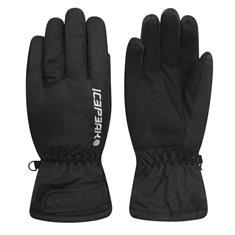 Icepeak Dino Ski Handschoenen