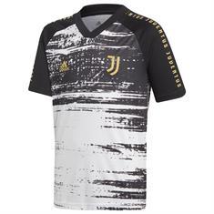 Juventus Preshi Y