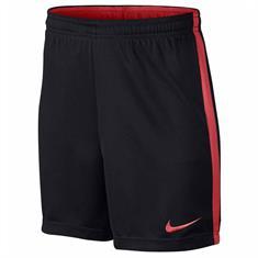 Nike Dry Academy Voetbalshort Junior