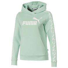 Puma AMPLIFIED HOODY TR