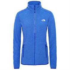 The North Face 100 Glacier Fleece Vest