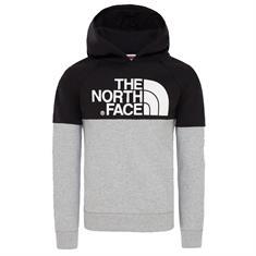The North Face Drew Peak Hoodie Sweater Junior