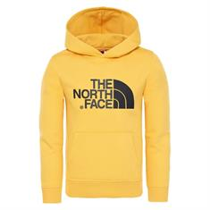 The North Face Drew Peak Hoody Sweater