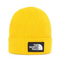 The North Face Y BOX LOGO CUFF BEAN SUMMIT GO