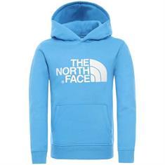 The North Face Y DREW PEAK PO HOODIE